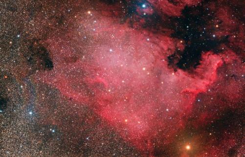 NGC7000 Leonardo Orazi