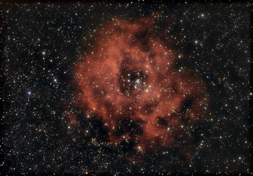 NGC 2244 di Daniele Odorico